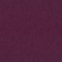 molplast-tapeta-gyor-dieter-0018